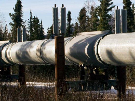 """""""Транснефть"""" заявила об умышленном загрязнении нефти в """"Дружбе"""""""