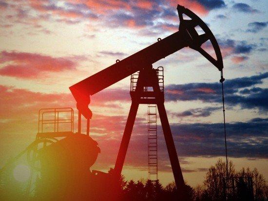 Лукашенко оценил в сотни миллионов долларов ущерб от нефти из РФ