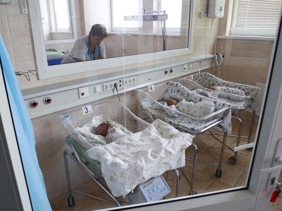 Назван топ российских регионов по рождаемости и смертности