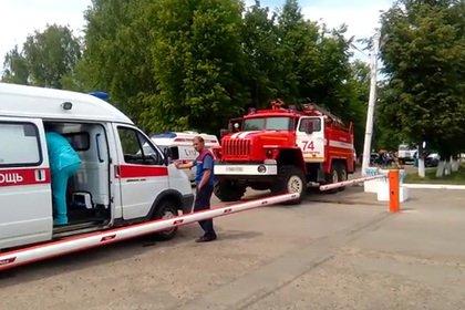 Потерявшийся россиянин обустроился в тайге и дождался спасателей с камерами