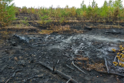 Названа причина авиакатастрофы Ан-148 «Саратовских авиалиний» в Подмосковье