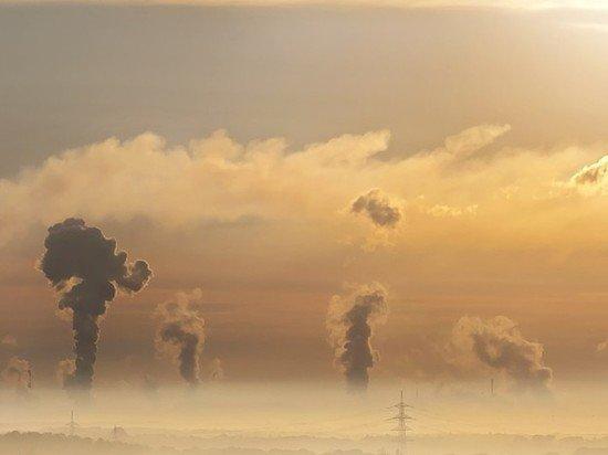 Толоконникова написала письмо Путину об экологии