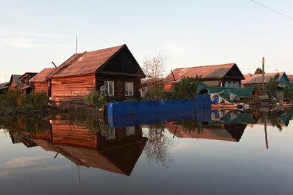 Спасение животных в затопленной Иркутской области сняли на видео