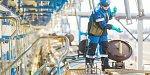 Омским грузоотправителям предложили новую технологию ускоренных перевозок наливных грузов