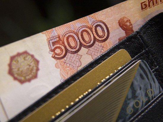Стало известно, на что россияне тратят взятые в кредит деньги