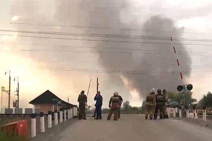 Площадь лесных пожаров в России предложили пересчитать по новой формуле