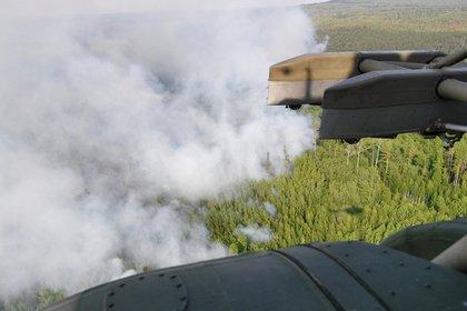 Минобороны потушило свои лесные пожары в Сибири