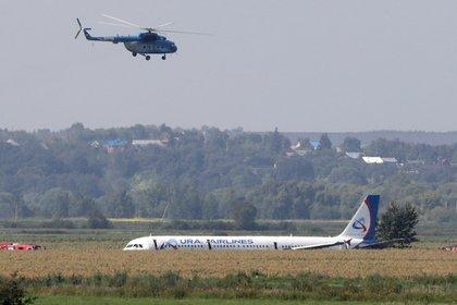 Черные ящики аварийно севшего в кукурузном поле самолета начали расшифровывать