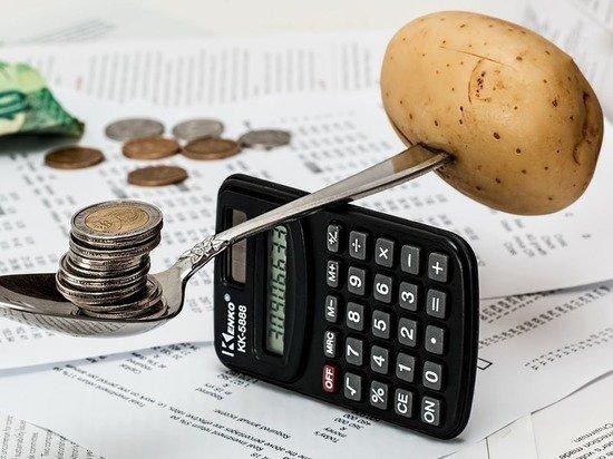 Профицит бюджета РФ в 2020 году составит 0,9 трлн рублей