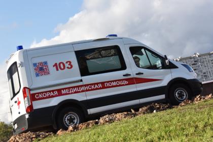 В российском детсаду дерево упало на детей и воспитательницу
