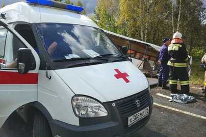 Волк напал на людей в Крыму