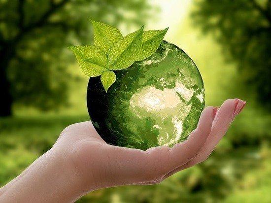 «Роснефть» получила премию «Коммерсантъ Инициативы» за экологический проект