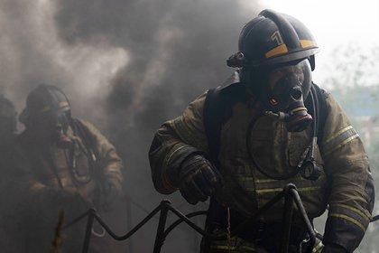 Возле МКАД начался крупный пожар