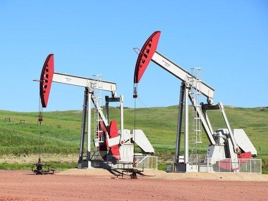 Разногласия внутри ОПЕК подорвут цены на нефть: чего бояться России