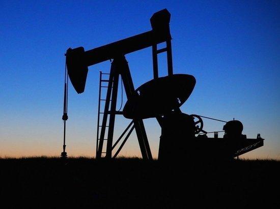 Эксперт предсказал последствия замены Белоруссией российской нефти