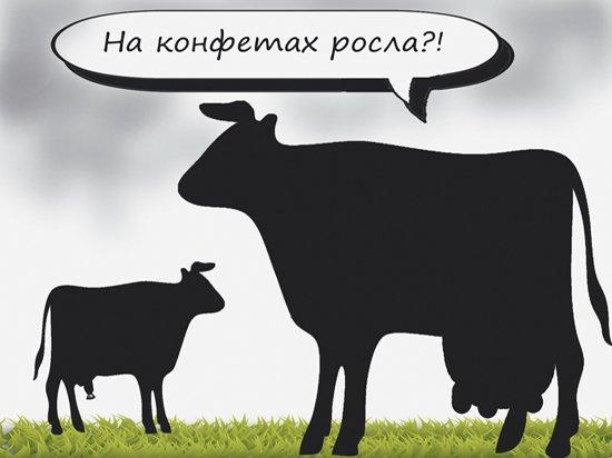 Предсказанный аналитиками рост цен на продукты напугал россиян