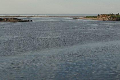 Залив в районе взрыва экспериментального российского двигателя закрыли
