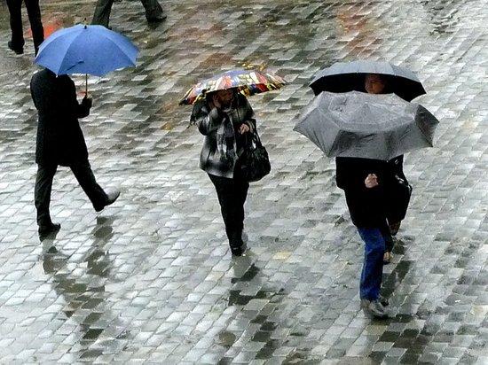 Россиянам рассказали, каким будет лето после аномально теплой зимы