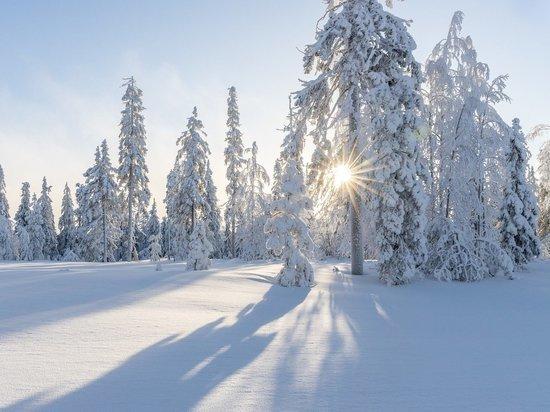 Россиянам пообещали возвращение холодной зимы