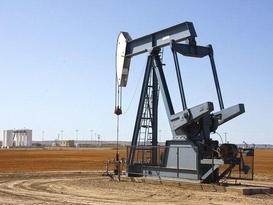 Нефтяная война требует жертв: цена барреля упадет до $20