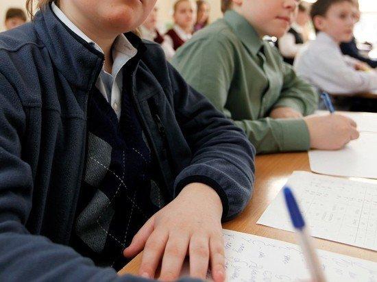 Школьникам Петербурга предложили перейти на дистанционное обучение