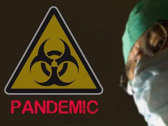 Глава Всемирной продовольственной программы заявил о заражении коронавирусом