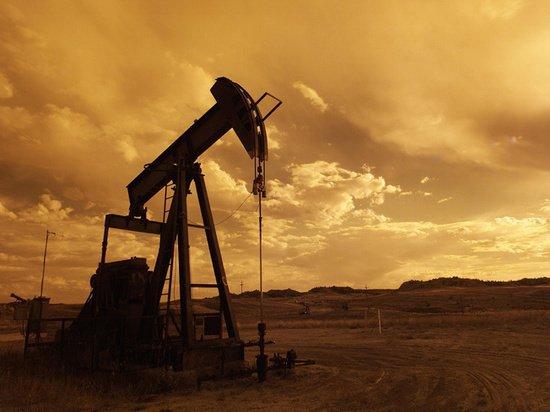СМИ: в Минэнерго США предлагают нефтяной союз с Саудовской Аравией
