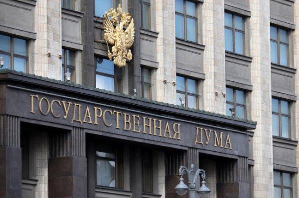 В Госдуме поддержали решение о переносе Олимпиады
