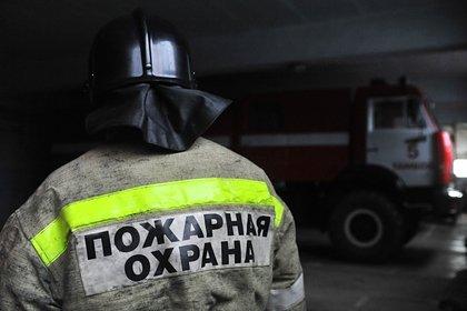 Россиянин вызвал скорую ребенку с пневмонией и избил врачей за спецкостюмы