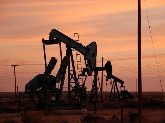 Министры энергетики США и РФ провели телефонные переговоры по нефти