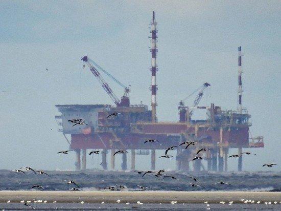 Нефтяное фиаско России: ОПЕК ухудшил годовой прогноз