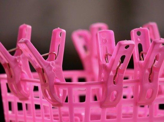Эксперты раскритиковали идею ЛДПР по введению пособий для домохозяек