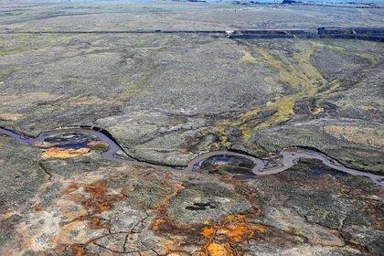 Названы сроки сбора разлившегося топлива в Норильске