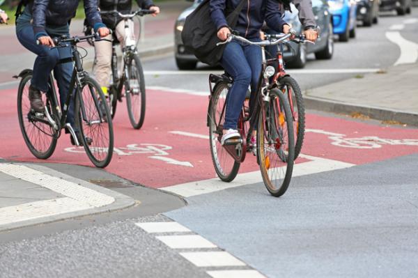 Москву и Петербург объединит велотрасса длиной 1150 километров