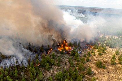 Унесший две жизни пожар в российском регионе показали с воздуха