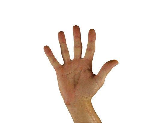 Переводчики жестового языка будут работать по новым правилам – Минтруд