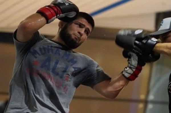 Нурмагомедов проведет первый бой в этом году против американца Джастина Гэтжи