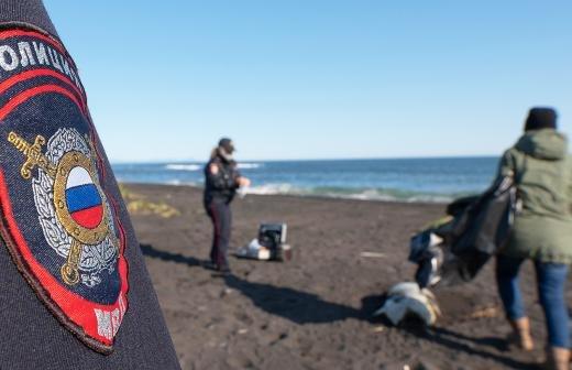 Камчатгидромет объяснил выброс морских животных на берег