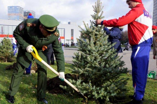 В спорткомплексе ЦСКА появилась аллея в честь армейцев-ветеранов войны