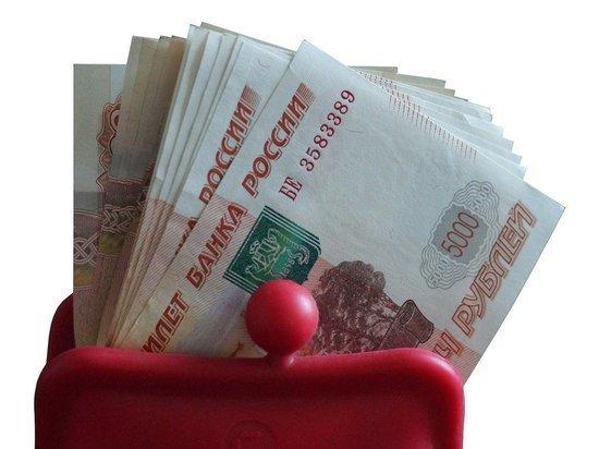 Государство вряд ли одобрит выплаты материям: в пандемию денег нет