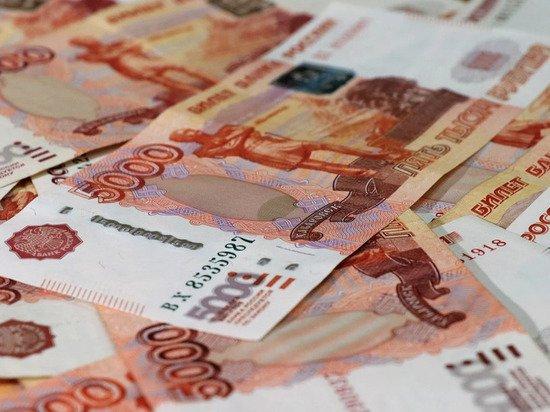Россиянам назвали риски при выплатах на детей