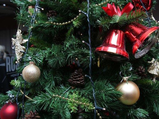 Россиян призвали не ставить новогодние елки высотой до потолка