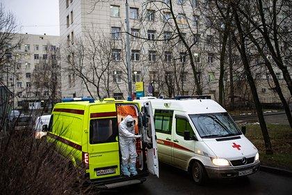 Восьмилетняя российская девочка проигнорировала укус собаки и умерла