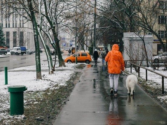 Жителям Европейской части России рассказали о погоде на Рождество