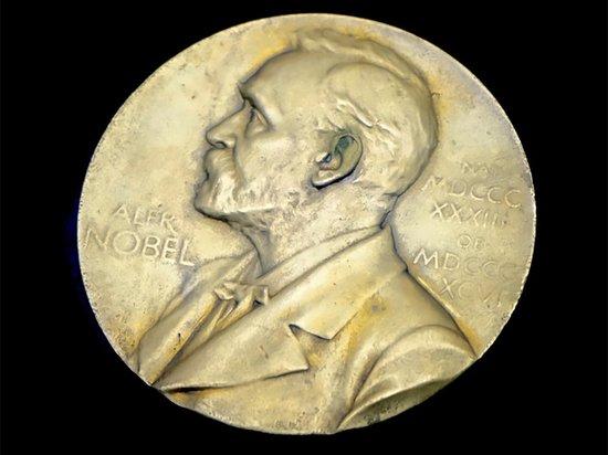 Ассанж, Мэннинг и Сноуден оказались претендентами на Нобелевскую премию