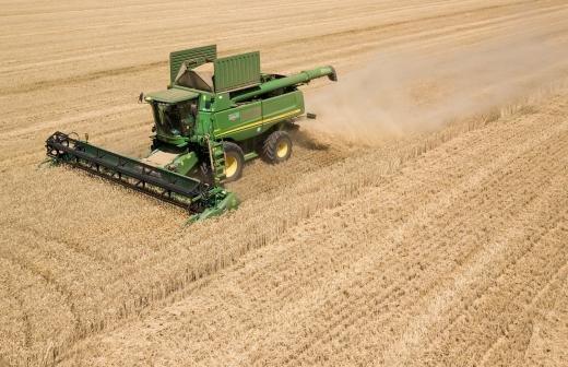 Юрист перечислил случаи для штрафов за выращивание картофеля