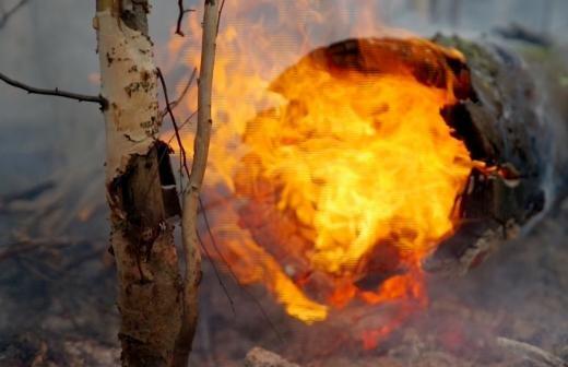 Ученый РАН оценил опасность надвигающейся на Россию магнитной бури