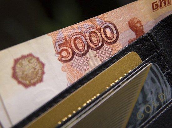 Российским семьям пообещали новые выплаты: 20 тысяч беременным