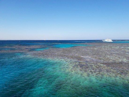 На Красном море построят огромный островной курорт