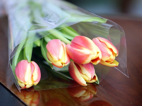 Какие цветы нельзя покупать к восьмому марта: вызывают сильнейшую аллергию